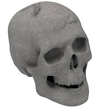 Regal Flame Human Skull Gas Log for Indoor or Outdoor Fireplaces Fire Pits Halloween Decor - Gray