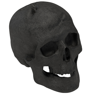 Regal Flame Human Skull Gas Log for Indoor or Outdoor Fireplaces Fire Pits Halloween Decor - Black